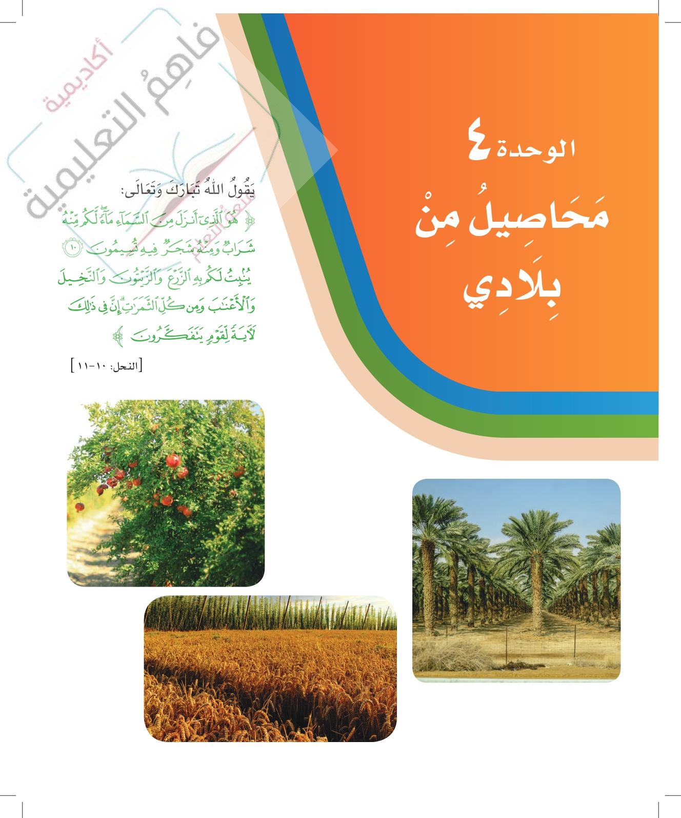 حل لغتي ثاني ابتدائي – الوحدة الرابعة – محاصيل من بلادي – صفحة 120-158